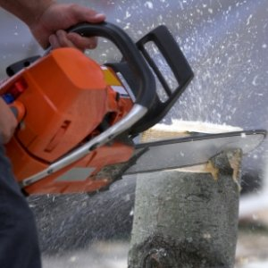 Stump Cutting