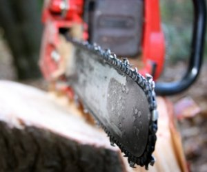 Chainsaw Chain Closeup